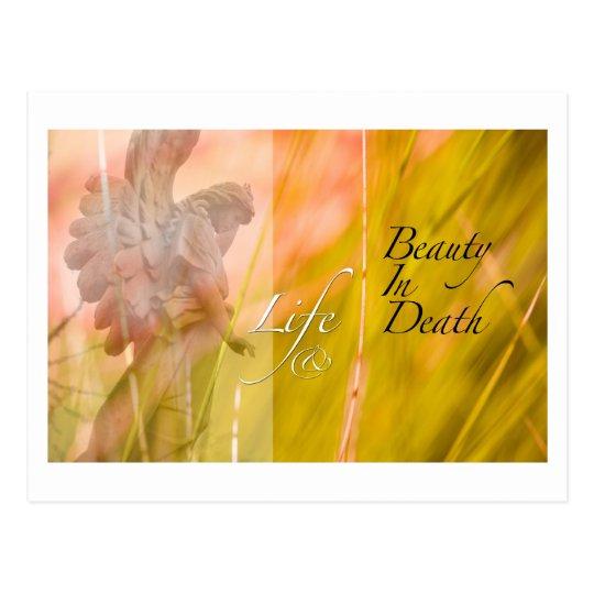 life and beauty postcard