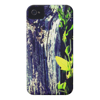 Life and Death iPhone 4 Case