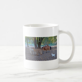 Life at the ranch coffee mug