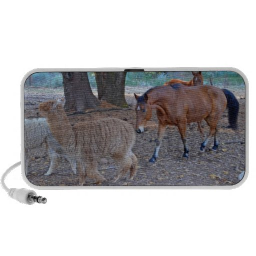 Life at the ranch travelling speaker