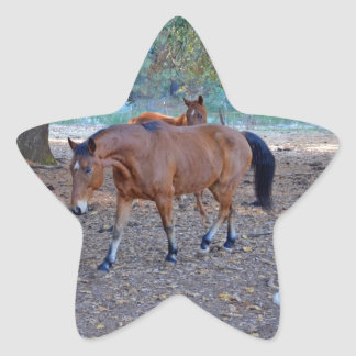 Life at the ranch star sticker
