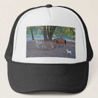 Life at the ranch trucker hat