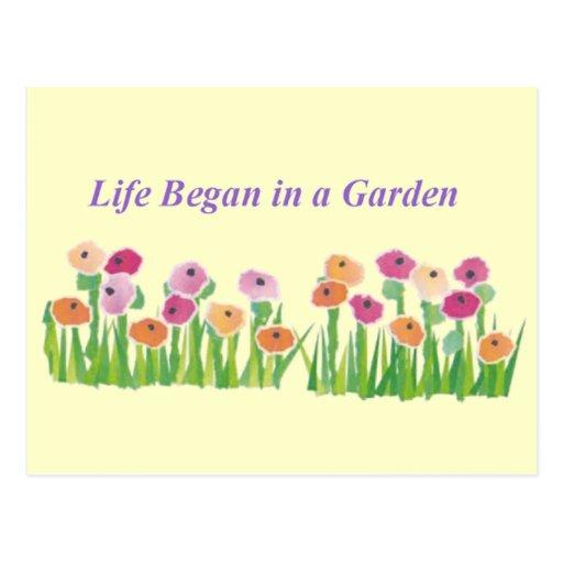 LIFE BEGAN IN A GARDEN postcard