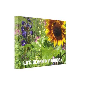 Life Began In A Garden Stretched Canvas Print