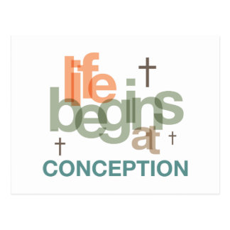 Life Begins At Conception Postcard