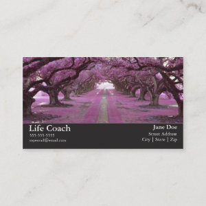 Life Coach Business Card