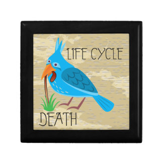 Life Cycle Jewelry Box