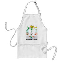 Life Cycle Of A Flower (Angiosperm) Adult Apron