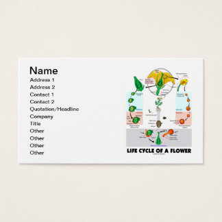 Life Cycle Of A Flower (Angiosperm) Business Card