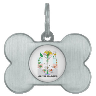 Life Cycle Of A Flower (Angiosperm) Pet Tag