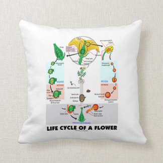 Life Cycle Of A Flower (Angiosperm) Throw Pillow