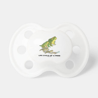 Life Cycle Of A Frog (From Egg To Tadpole To Frog) Pacifier