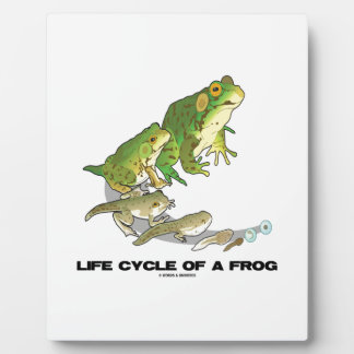 Life Cycle Of A Frog (From Egg To Tadpole To Frog) Plaque