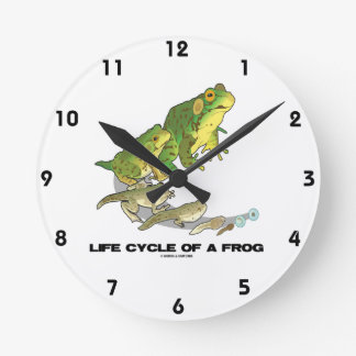 Life Cycle Of A Frog (From Egg To Tadpole To Frog) Round Clock