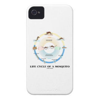 Life Cycle Of A Mosquito (Egg Larva Pupa Imago) iPhone 4 Cover