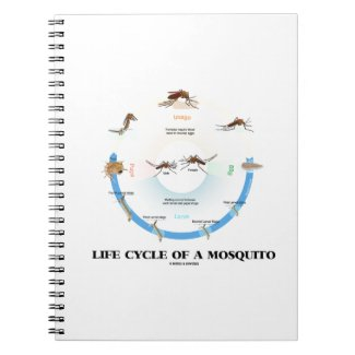 Life Cycle Of A Mosquito (Egg Larva Pupa Imago) Spiral Note Books