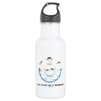 Life Cycle Of A Mosquito (Egg Larva Pupa Imago) 18oz Water Bottle