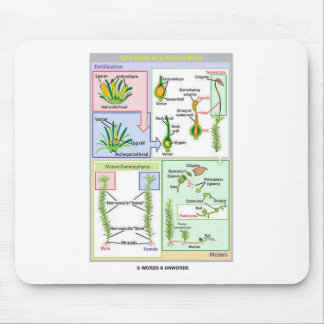 Life Cycle Of A Typical Moss (Bryophyte) Mouse Pad