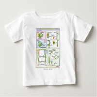 Life Cycle Of A Typical Moss (Bryophyte) T-shirts
