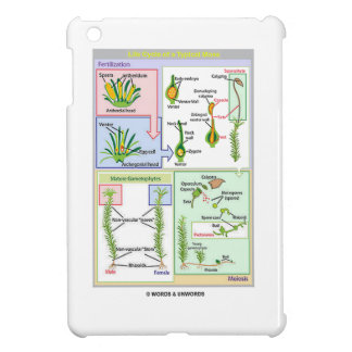 Life Cycle Of A Typical Moss Case For The iPad Mini