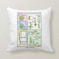 Life Cycle Of A Typical Moss Throw Pillow