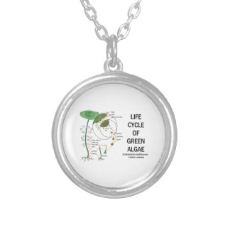 Life Cycle Of Green Algae Silver Plated Necklace
