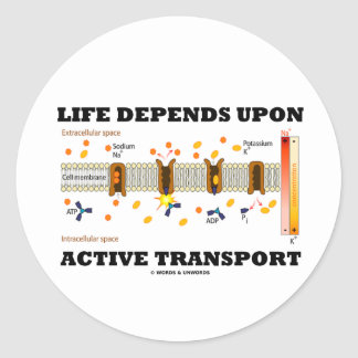 Life Depends Upon Active Transport (Na-K Pump) Classic Round Sticker