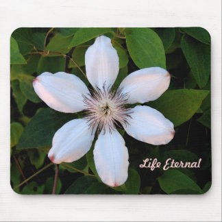 Life Eternal Flower Mouse Pad