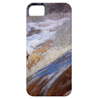 Life Force Gifts iPhone SE/5/5s Case