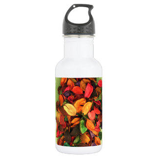 Life Fragrance in colors.png Stainless Steel Water Bottle