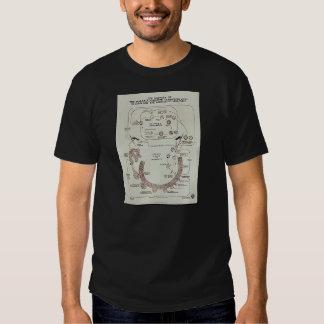 Life History Of The Malaria Parasite Plasmodiume V T-shirt