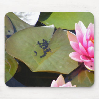 Life in the Lilies: Tadpoles Mouse Pad