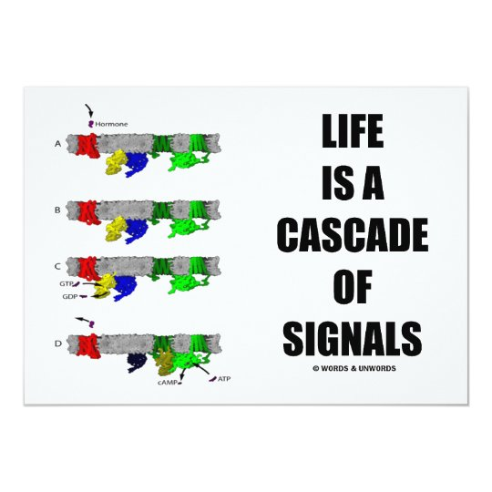 Life Is A Cascade Of Signals (Signal Transduction) Card