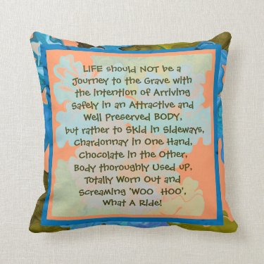 life is a fun journey pillow
