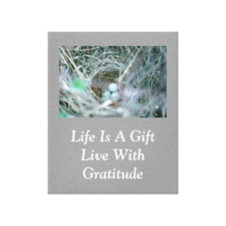 Life Is A Gift / Bird Nest Canvas