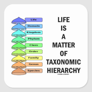 Life Is A Matter Of Taxonomic Hierarchy (Biology) Square Sticker