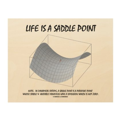 Life Is A Saddle Point Math & Geometry Humor Wood Print