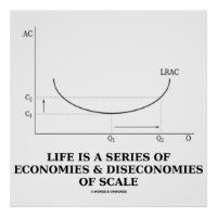 Life Is A Series Of Economies & Diseconomies Scale Poster