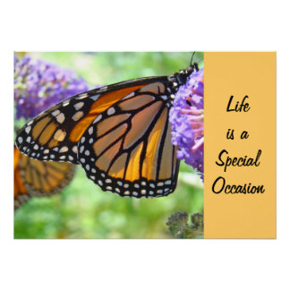 Life is a Special Occasion art prints Butterfly