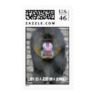 Life is a Zoo in a Jungle Custom Postage