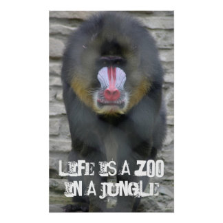 Life is a Zoo in a Jungle Poster
