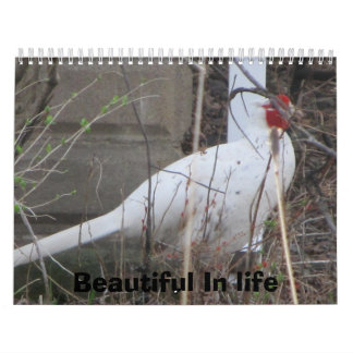 Life  is Beautiful Calendar
