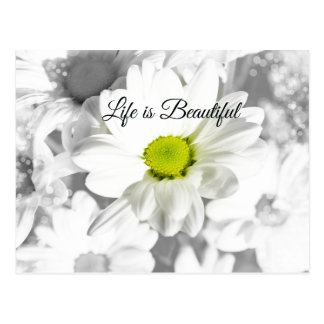 Life is Beautiful Quote with Daisies Postcard