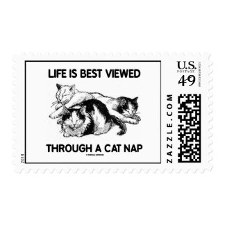 Life Is Best Viewed Through A Cat Nap (Three Cats) Stamps