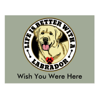 Life Is Better With A White Labrador Dog Breed Postcard