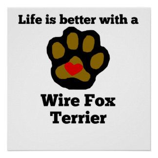 Life Is Better With A Wire Fox Terrier Poster
