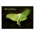 life is dance. greeting card