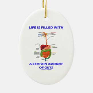 Life Is Filled With A Certain Amount Of Guts Christmas Tree Ornament