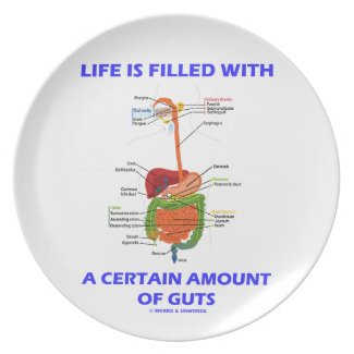 Life Is Filled With A Certain Amount Of Guts Plates