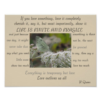 Life is Finite and Fragile poster